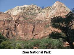 anthony_carlile_zion_national_park